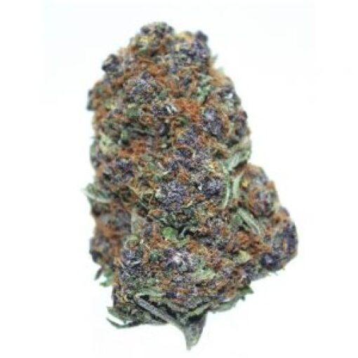 purple urkle seeds